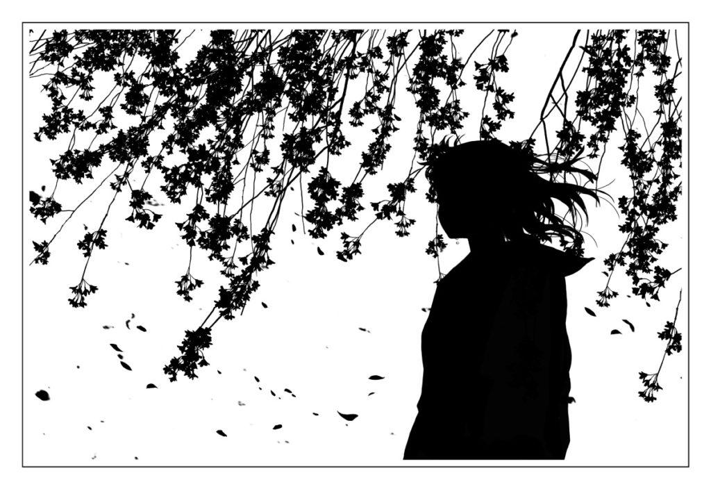 桜包み2枚目(白)