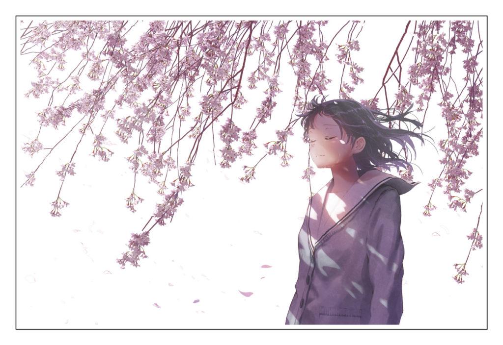 桜包み2枚目(4C)